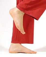 Spiraldynamik Fußschule Andrea Bubos
